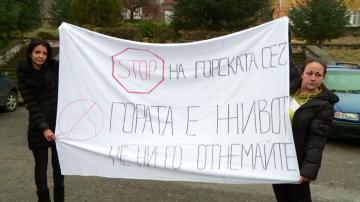 Протест в пловдивско село срещу сеч на вековна борова гора