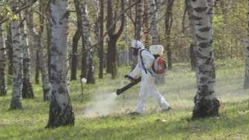 Започва пръскането срещу комари по поречието на Дунав