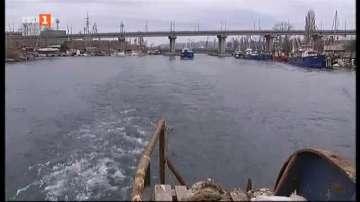 Рибните запаси в Черно море намаляват