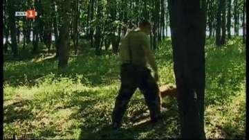 Ловци на трюфели искат дейността им да се регламентира със закон