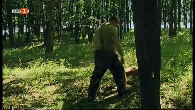 Ловци на трюфели от Русе настояват дейността им да се