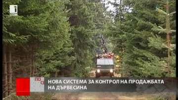 Над 80% от търговете с дървесина у нас ще стават по електронен път