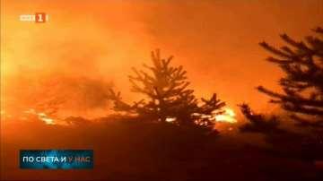 Пожарът край Трявна е локализиран