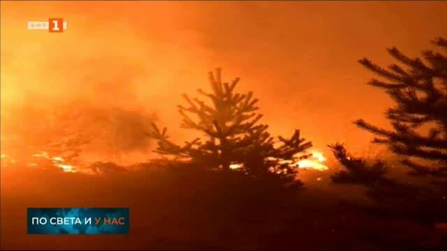Големият пожар, който бушува край Трявна, е локализиран тази нощ