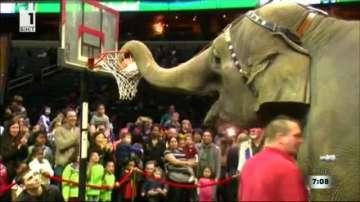 Цирк Барнъм в САЩ спуска последна завеса след 146 години