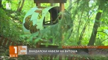 Вандали отново разрушиха детски кът до Музея на мечката на Витоша