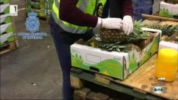 745 килограма кокаин, скрит в ананаси