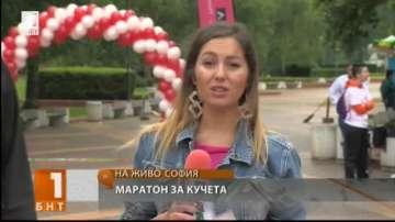Първият маратон за кучета и стопани ще е част от Живей активно в София