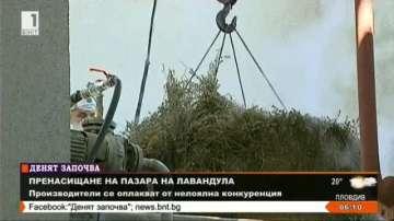 Риск за доброто име на българското лавандулово масло