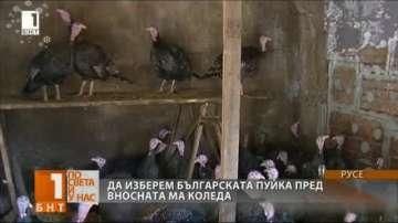 Да изберем българската пуйка пред вносната за Коледа