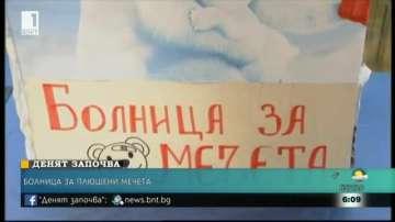 Болница за плюшени мечета за седма поредна година в България