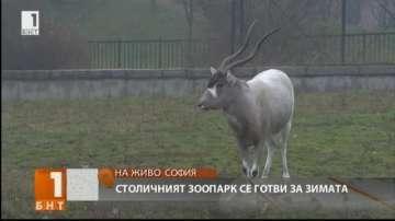 Столичният зоопарк се готви за зимата