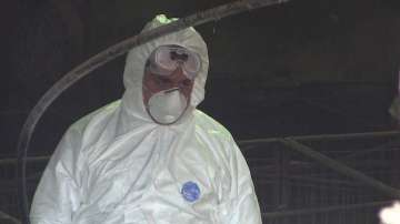 Огнище на птичи грип във ферма в Раковски