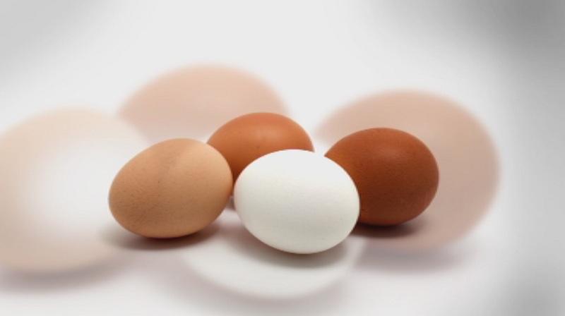 Сигнал за развалени яйца в ресторант е подаден в РЗИ-Стара Загора
