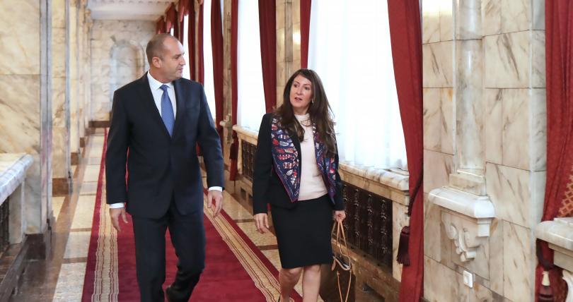 снимка 3 Румен Радев се срещна с посланика на САЩ у нас Херо Мустафа
