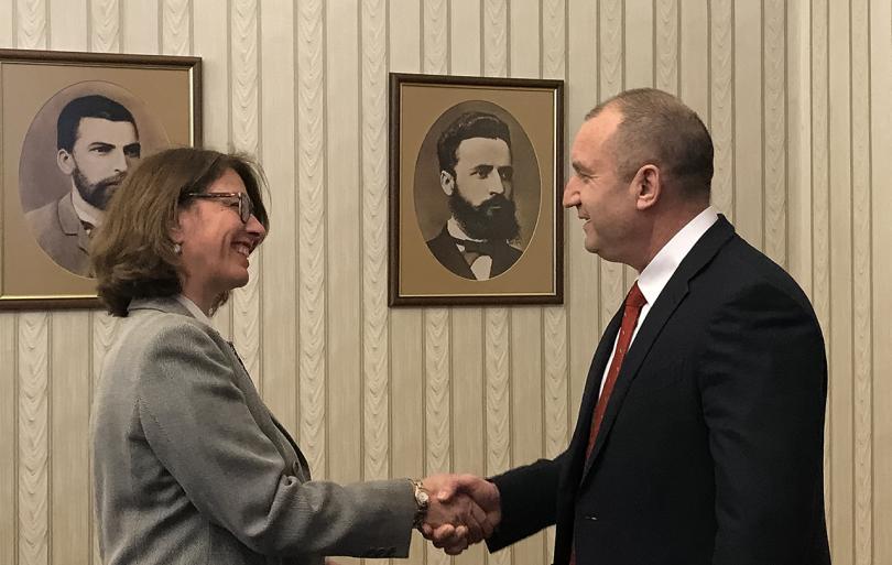 Снимка: Президентът Радев обсъди бъдещия съвместен научен център с швейцарския посланик