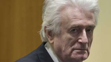 Радован Караджич беше осъден на доживотен затвор