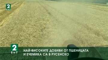 Най-високите добиви от пшеницата и ечемика са в Русенско