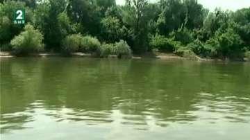 По поречието на река Дунав стартира проект за запазване на биоразнообразието
