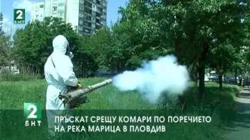 Пръскат срещу комари по поречието на Марица