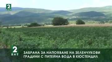 Забрана за напояване на зеленчукови градини с питейна вода в Кюстендил