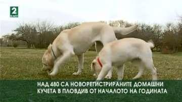 Над 480 са новорегистрираните домашни кучета в Пловдив от началото на годината