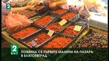 Появиха се първите малини на пазара в Благоевград