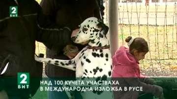 Над 100 кучета участваха в международна изложба в Русе