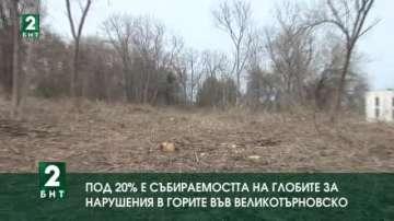 Под 20% е събираемостта на глобите за нарушения в горите във Великотърновско
