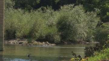 Затлачените реки са основната причина за наводнения