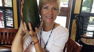 Гигантско авокадо може да постави световен рекорд