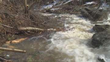 Сеч по поречието на река Яденица създава опасност от наводнение