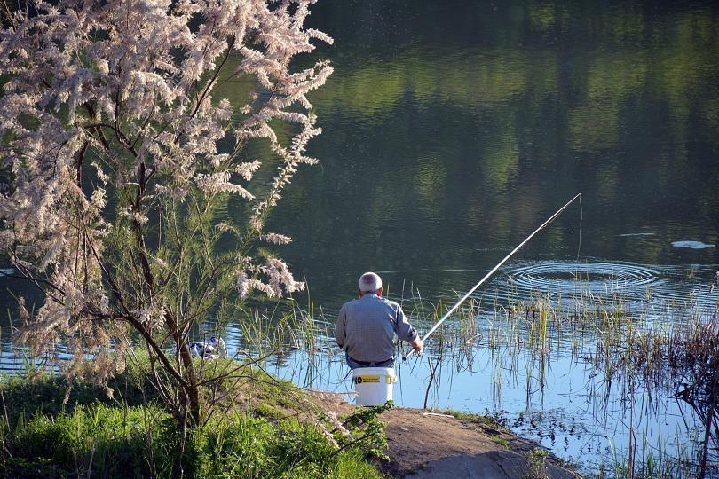 снимка 1 Депутатите обсъждат по-строги санкции срещу бракониерския риболов