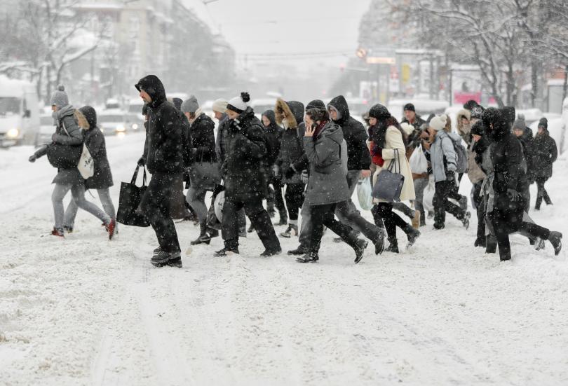 2000 случая морбили потвърдени румъния души починали