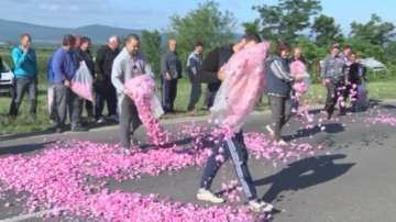 Протест на розопроизводители, министър Порожанов обмисля Закон за розата