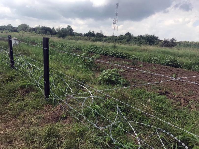 снимка 1 Африканската чума по свинете: Готови са 11 км. от оградата с Румъния