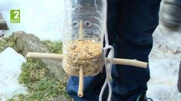 В Русе деца спасяват птици през зимата