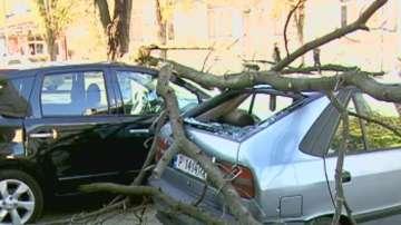 Поривите на вятъра достигнаха 86 км в час в Русе