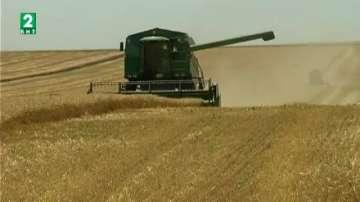 Започна жътвата на пшеница във Варненска област