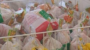 Заразеното със салмонела птиче месо от Полша не е попаднало в търговската мрежа