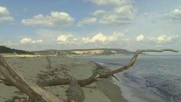 Плажовете без концесионер ще имат спасителни постове