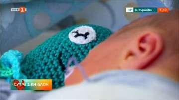 Октоподи помагат на бебета в Австралия