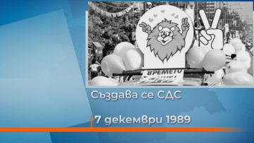 Хронология на събитията след 10 ноември 1989