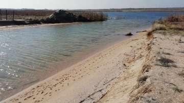 Орнитолози сезират прокуратурата за източването на Шабленското езеро