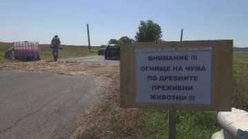 Въведоха карантинна зона в община Болярово