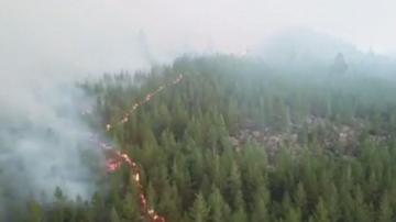 Швеция се бори с най-сериозните горски пожари от десетилетия