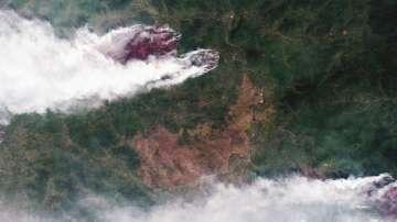 Руските власти са започнали 277 дела във връзка с мащабните пожари