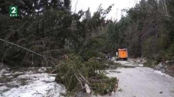 След урагана вече има ток в Родопите