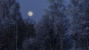 Наблюдаваме космическото явление Снежна луна