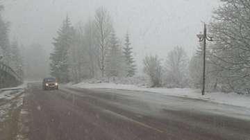 20 см сняг и силен вятър се очакват в област Видин